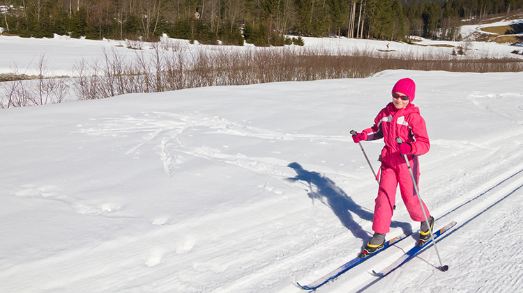 Friday Family Night: Cross-Country Skiing