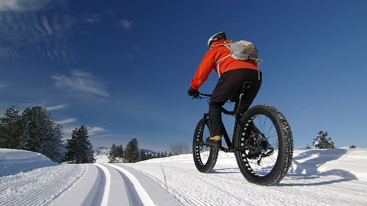Fat Tire Biking in Fairbanks