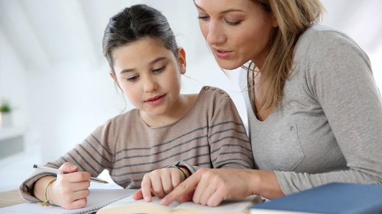 Homeschool Support Initiative