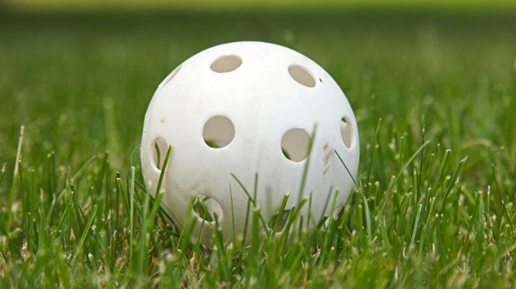 Intramural Whiffle Ball Tournament Registration Deadline