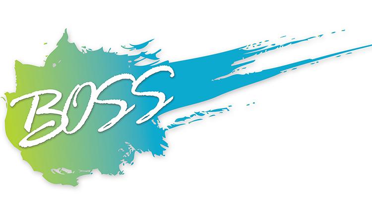vz_boss_logo_750x421.jpg