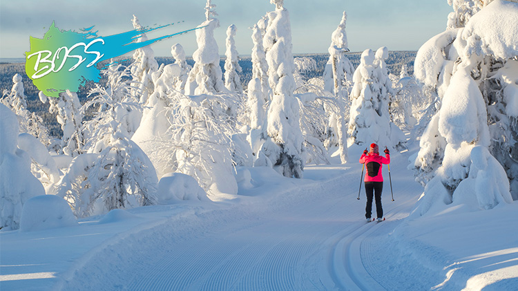 B.O.S.S. Adventures with Outdoor Recreation: Cross-Country Skiing